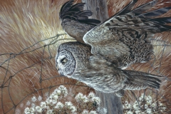 110 - Great Grey Owl SOLD
