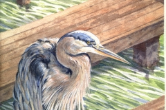 116 - Roche Harbor Heron commission