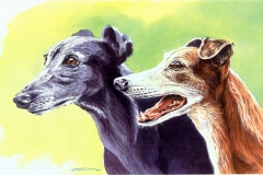 250 - Grayhound pair commission
