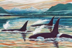 231 - Orca at Frederick Sound $600.