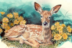 248 - Fawn in Flowers SOLD