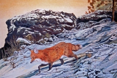 261 - Red Fox in snow SOLD