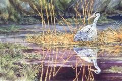 115 - Marsh Lord Great Blue Heron SOLD