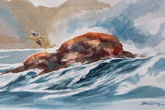 136 - Surf flying Seagull $450
